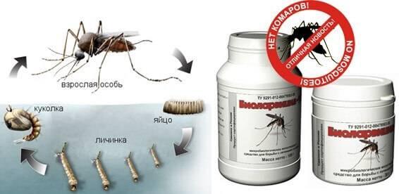 Средство от комаров на даче по периметру