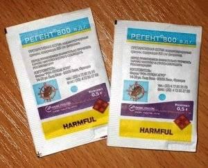 Колорадский жук борьба с ним препараты