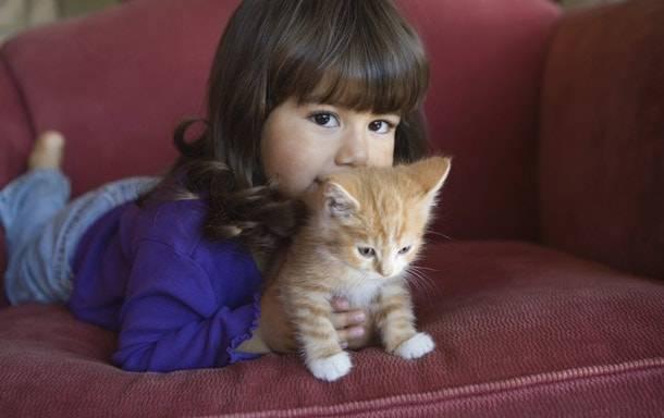 Кошачьи блохи передаются человеку