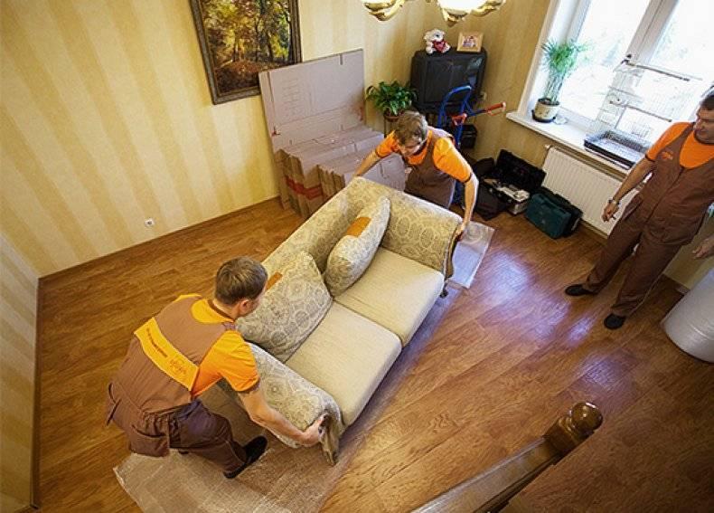 Как потравить клопов в квартире самостоятельно