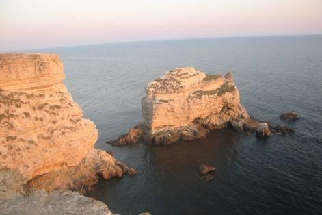 Крымская сколопендра