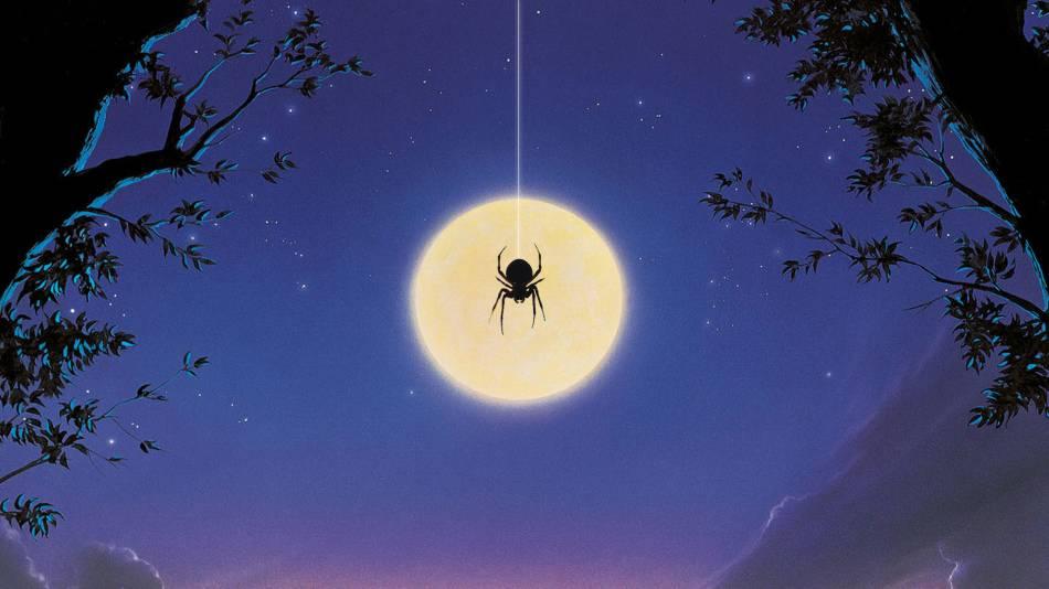 Паук спускается вниз по паутине примета