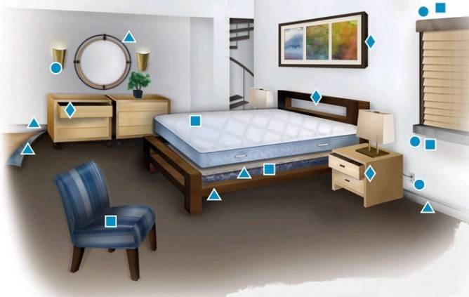 Где прячутся постельные клопы