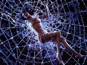 Увидеть паука ночью примета