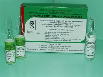 Прививка от клещевого энцефалита схема вакцинации