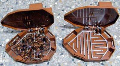 Как избавиться от тараканов навсегда