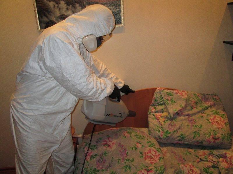Самое эффективное средство от клопов в квартире