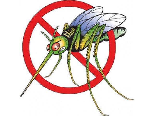Средство для обработки участка от комаров