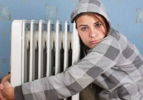 блохи боятся холода