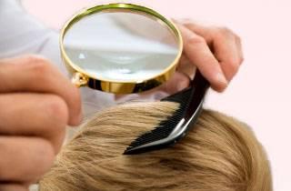 Могут ли завестись вши на окрашенных волосах