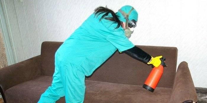 Как бороться дома с клопами