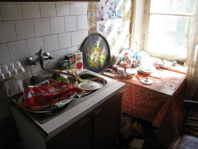 Красные муравьи в квартире как избавиться