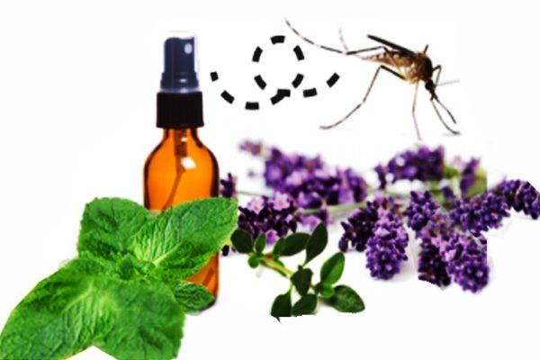 Эффективное средство от комаров на природе