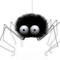 К чему видеть наяву паука