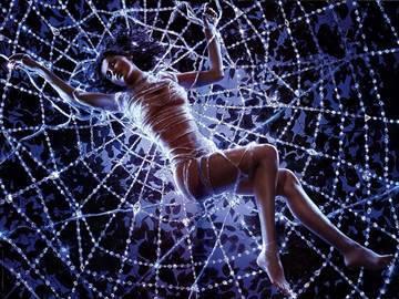 Увидеть паука ночью