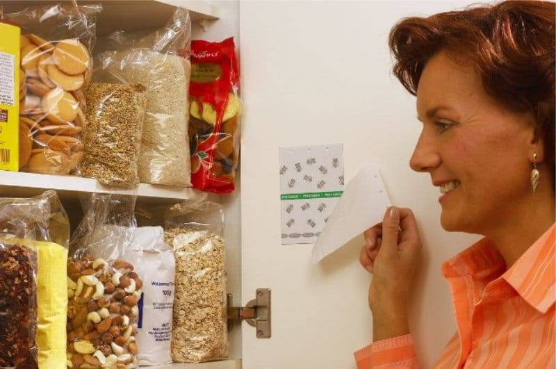 Средства от пищевой моли на кухне