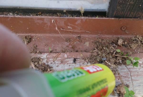Против муравьев