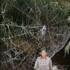 Примета паук ползет по ноге
