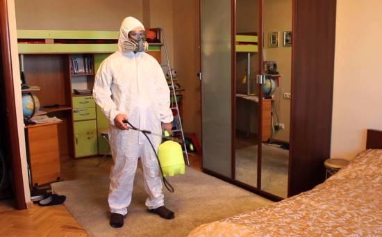 Средства для уничтожения клопов в квартире