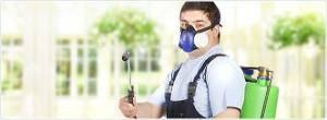 Чистый дом средство от тараканов
