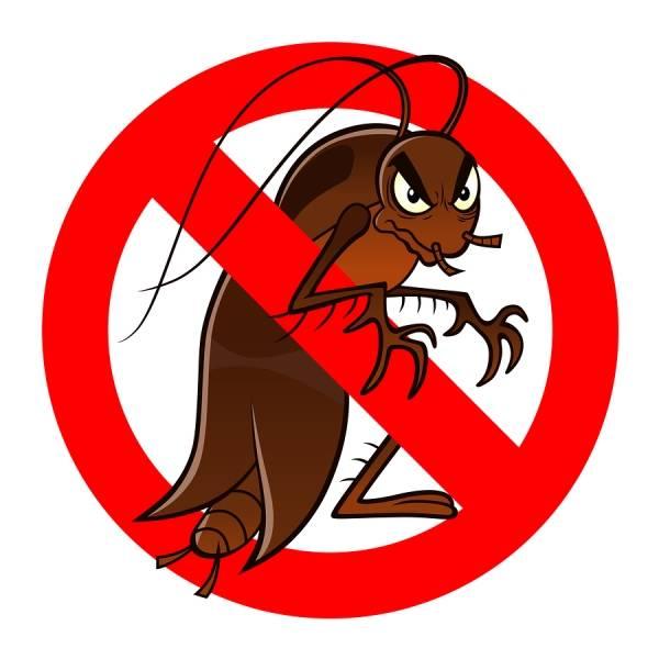 Мощное средство от тараканов