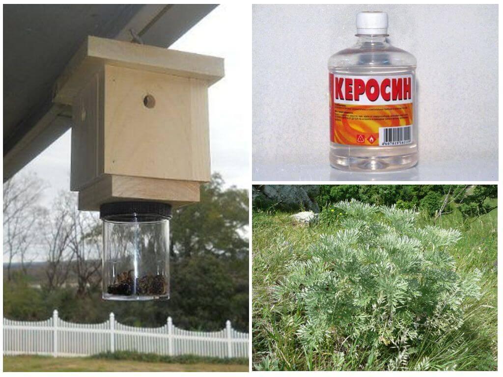 Как избавиться от пчел в стене дома