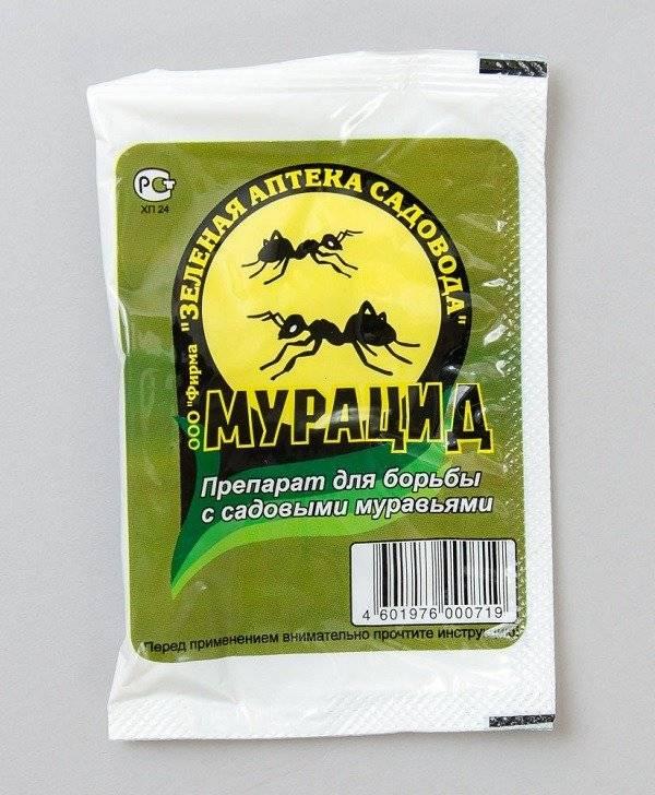 Лучшее средство от домашних муравьев