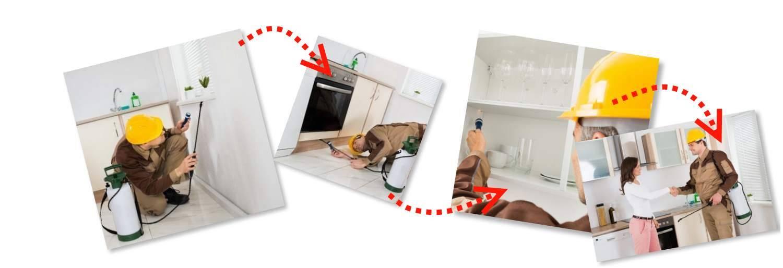 Обработать квартиру от тараканов