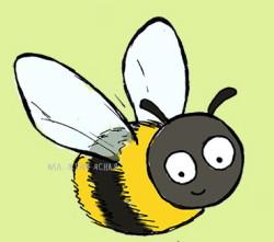 Где жало у пчелы